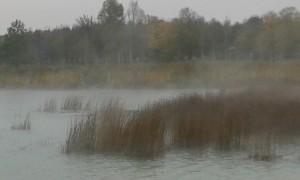 Nebel am Riemer See
