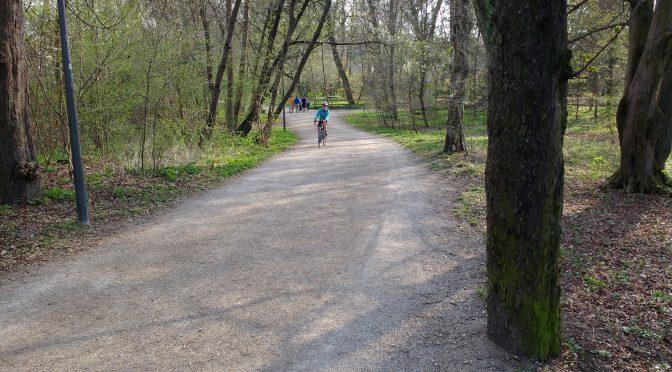 Frühlingswald im Stadtpark, in der Mitte ein Kind auf dem Rennrad.