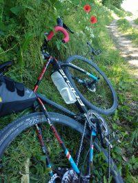 Zwei Fahrräder liegen in einer Böschung mit Mohn