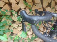 Rennrad-Lenker wird von Knöterich mit Blattläusen umrankt.