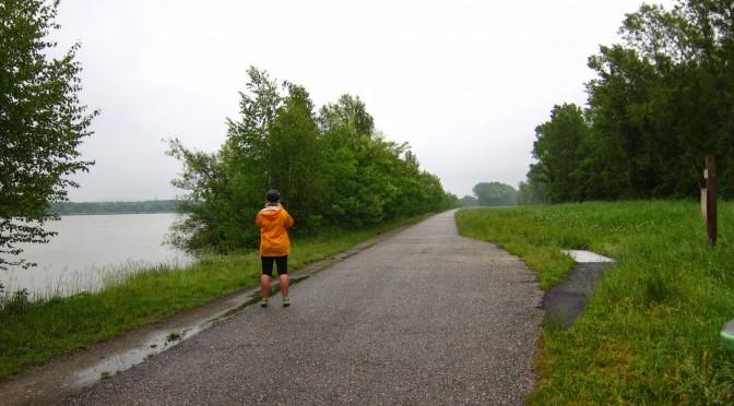 Donauradweg IV: Tulln – Wien (und wieder ganz heim)