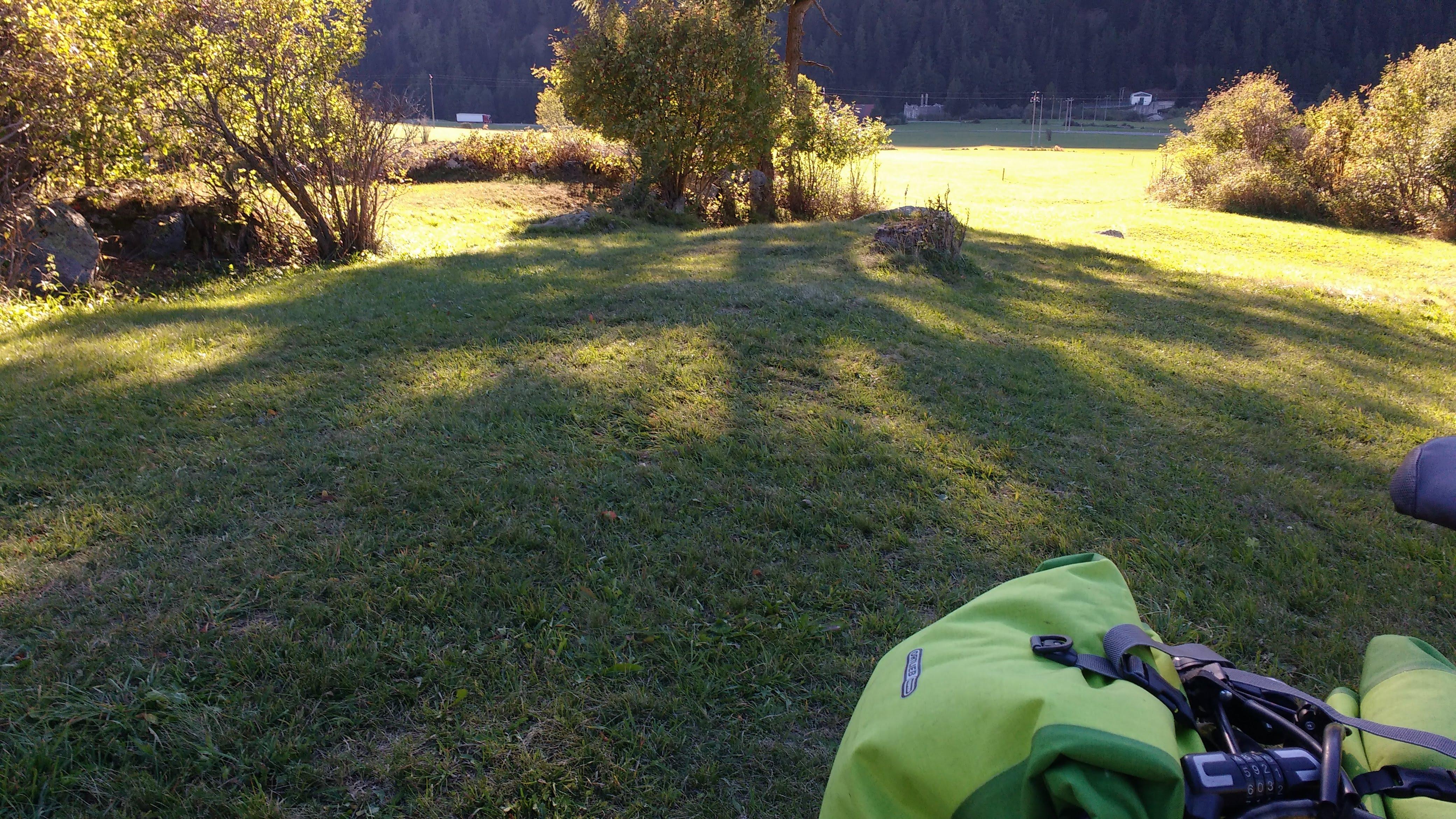 Fahrrad auf einer Wiese